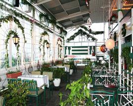 Lắp đặt mái hiên tạo không gian nuôi thú cưng và trồng cây cảnh